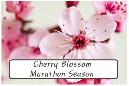 Cherry Blossom Marathon Season