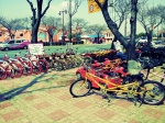 Gyeongju - Bikes galore