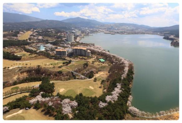 Gyeongju Marathon Start