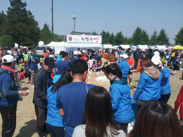 Gyeongju Cherry Blossom Marathon